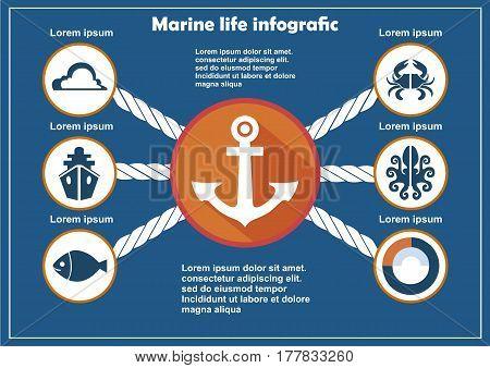 Marine Life Infographic