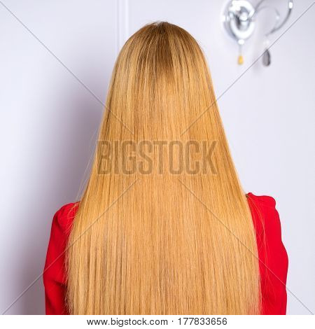 Female Long wavy blonde hair, rear view, studio wall background