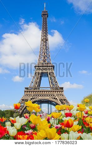 Eiffel Tower in sunny spring day day with tulips, Paris, France
