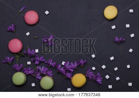 Colorful Macaron, Violet Flowers, Marshmallow, Zephyr
