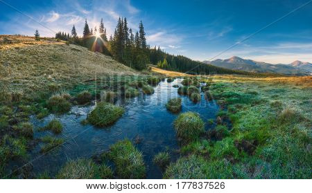 Carpathian Mountain Valley_2