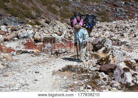 Senior Nepalese Porter carrying heavy Weight Luggage of Mountain Expedition on rocky Footpath. Nepal, Solo-Khumbu region, trek to Meru Peak, November 3, 2016