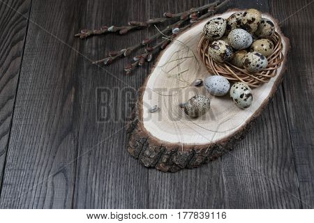 Easter composition with quail eggs in a nest  and twigs of willow blossom