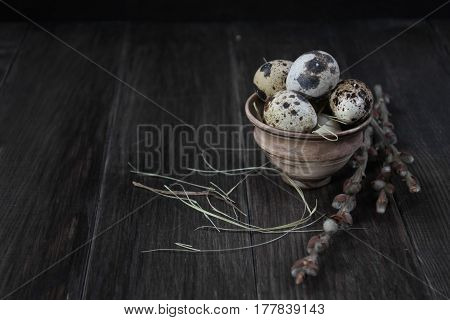 Easter composition with quail eggs and twigs of willow blossom