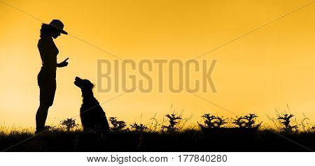 Orange-black website banner of dog training silhouette