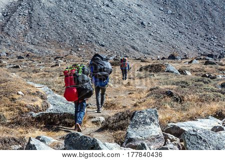 Sherpa Porters carrying large and multiple Bags of Luggage of Mountaineering Expedition in Nepal Himalaya rear view People unrecognisable