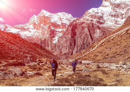 Diverse Group of People male and female young and mature walking on Footpath in Mountain Valley among high Summits and shining Sun