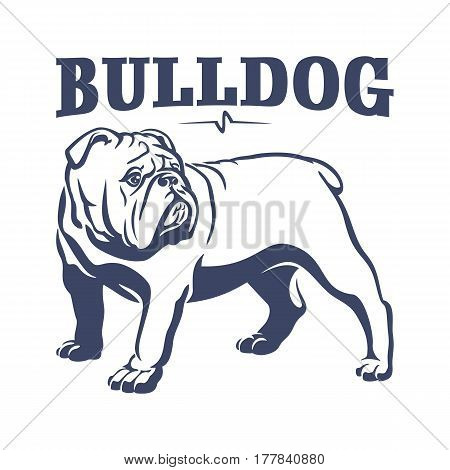 British bulldog mascot emblem. Dog vector illustration