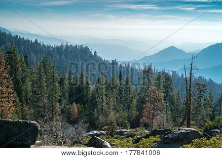 Landscape of Sequoia National park in spring with mountain peaks covered by snow
