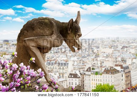 Gargoyle on Notre Dame Cathedral over Paris with magnolia flowers, France