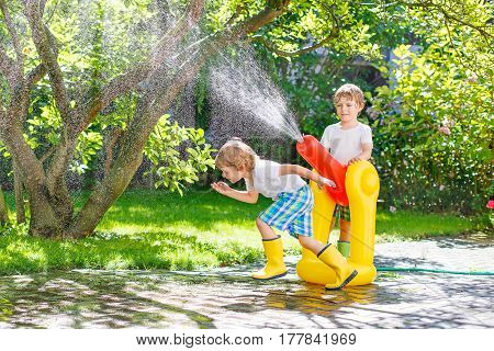 Two funny little kid boys playing together and splashing with a garden hose on hot and sunny summer day. Two siblings having fun outdoors. Funny outdoors leisure wth water for children.