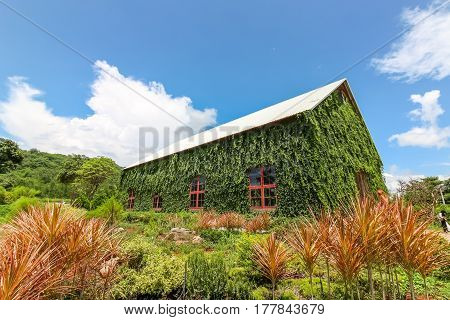 Nakhonratchasima Thailand - September 25, 2016 : Big House Surrounded With Green Plant Called Birder