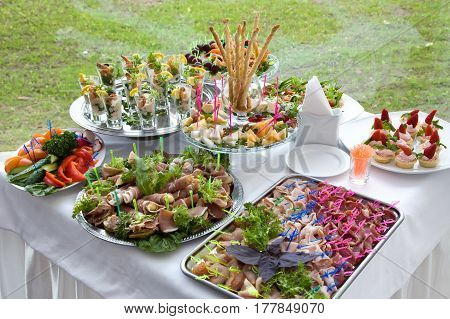 Different snacks and appetizers ready for a cocktail party. Catering concept.