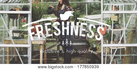 Woman Gardening Glasshouse Freshness Concept