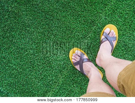 my leg over green grass field background