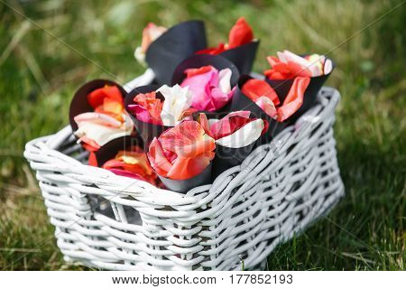 Wedding. Ceremony. On green grass there are envelopes with rose petals for wedding ceremony.