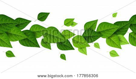 Horizontal border with green leaves on white background. Fresh spring foliage. Vector illustration. Spring is coming concept, environment and ecology frame.