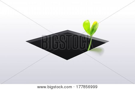 Young green sprout grow from the bottom isolated oh white background. Closeup. New life concept. Vector illustration