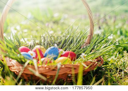 Colorful easter eggs.A basket of brightly colored Easter eggs.