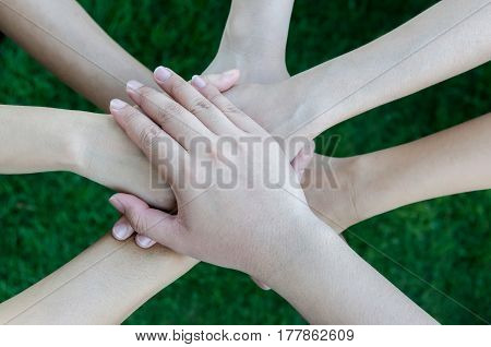 Join Their Hands On Green Grass Background.