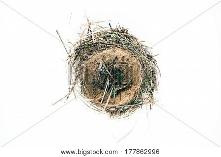 Real wild birds nest isolated over white background. Top view