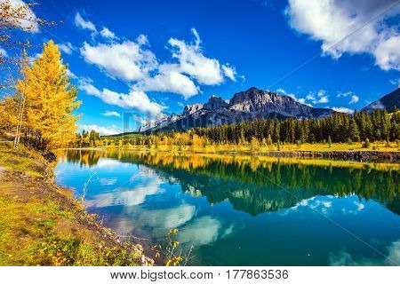 Canmore, near Banff National Park. The concept of hiking. The path and yellowing aspens surround the lake