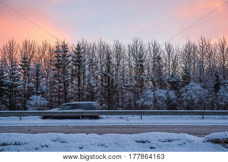 Snowy pine forest on countryside road with Romantic sky winter landscape Iceland.