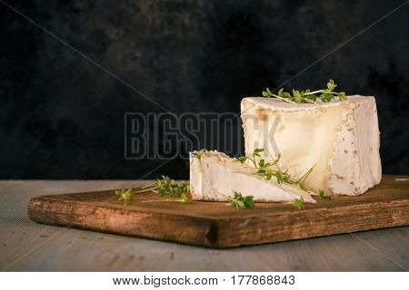 Unusual Camembert Cheese With Cube Shape And Cress