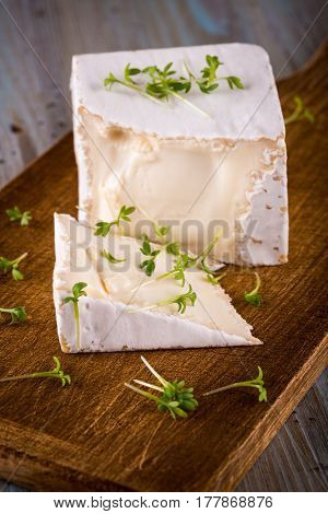 Unusual Camembert Cheese With Cube Shape And Spilled Green Cress Around
