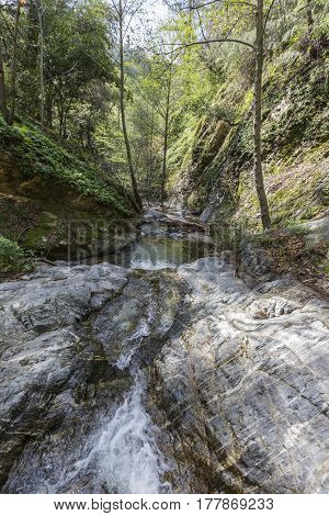 Eaton Canyon Creek near Idlehour Camp in the San Gabriel Mountains of the Angeles National Forest in Southern California.