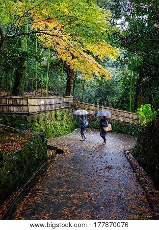 Autumn Scenery In Kyoto, Japan