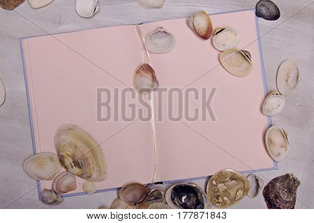 Sea travel sketchbook memories diary with shells on white background painted canvas