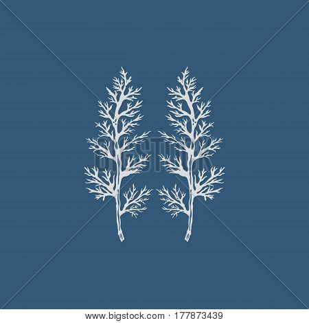 Leaves of the yarrow. Isolated object. Hand drawn. Vector illustration.