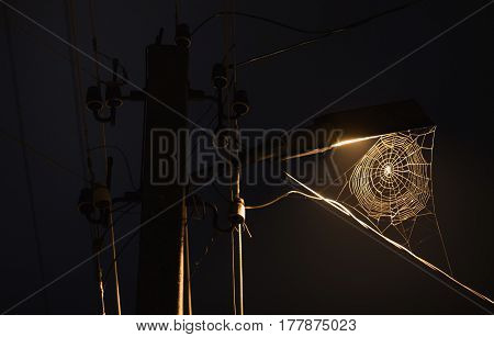 Web hanging on the lamp. The beautiful dark night scenery. Slow shutter speed. The spectacular night sky with the moon. Scenic view. The light from the lantern on the dark street. A terrible dark picture. Horror.