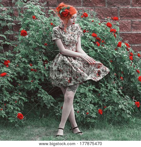 Roses flowers. A woman with red curly hair in a floral dress on a background of a bush with red roses. Red-haired girl with pale skin blue eyes bright unusual appearance and red lips and thin waist in the roses garden.