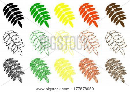 Rowan leaf - color set , rowan leaf