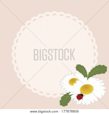 spring round frame with flowers daisies on a pink background. template for greeting card or photo frame. vector illustration