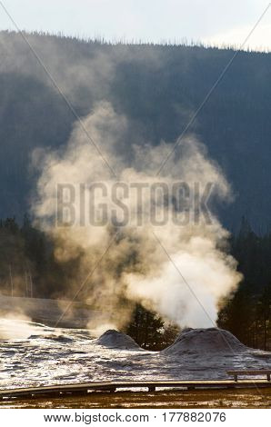 Geyser in Yellowstone National Park, United States.