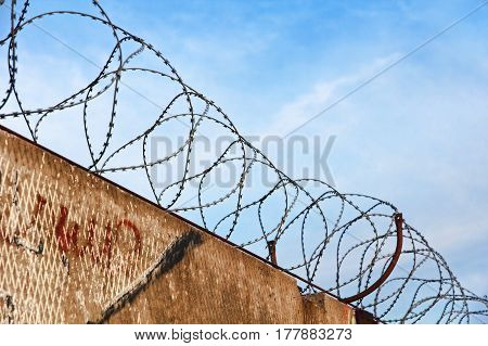 Barbed wire fence detail against of the blue sky taken closeup.