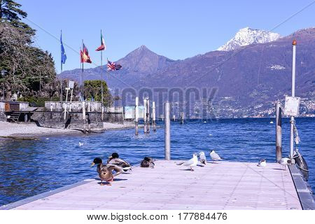 The Lake Front At Como On Italy