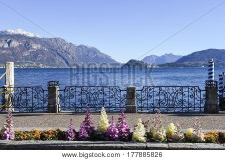 The Lake Front At Como