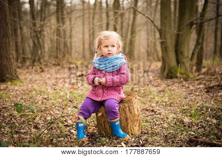 Thoughtful Girl In The Wood