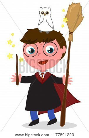 Cartoon wizard boy with wand, owl and broomstick vector