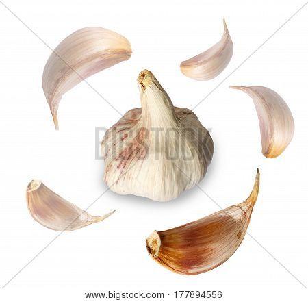Garlic Head With Garlic Cloves Flying Around It