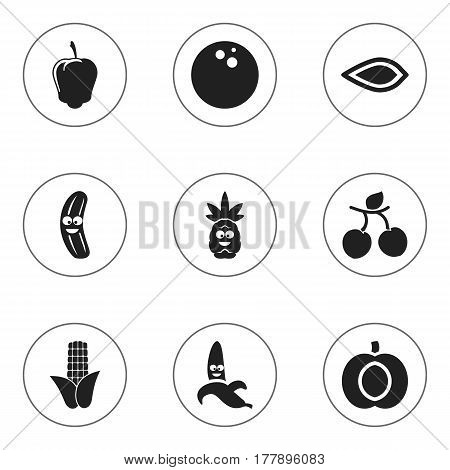 Set Of 9 Editable Cookware Icons. Includes Symbols Such As Apricot, Nectarine, Jungle Fruit And More. Can Be Used For Web, Mobile, UI And Infographic Design.