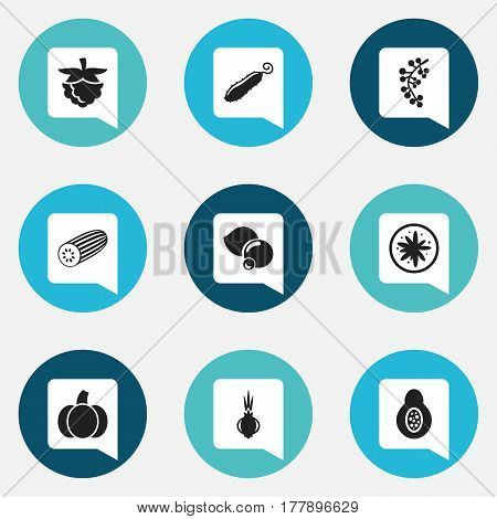 Set Of 9 Editable Cooking Icons. Includes Symbols Such As Gourd, Cucumber, Blackberry And More. Can Be Used For Web, Mobile, UI And Infographic Design.