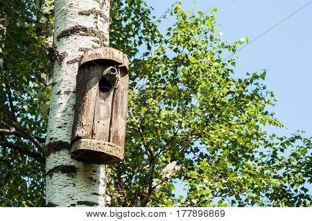 Simple old birdhouse in a rustic style. Concept of the season, guest house, own housing, natural materials. For background , backdrop, substrate, composition use.