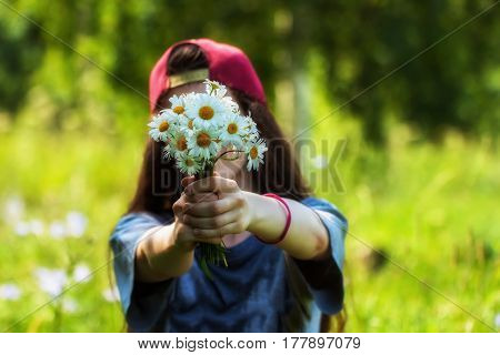 Seasons, teenager, nature concept. Girl with long hair in a cap holds out bouquet of chamomile, daisies to us, in front of face. Natural soft blurred background