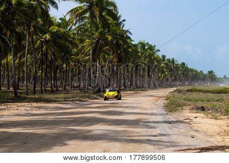 Dirty Road In Maracaipe - Pernambuco, Brazil