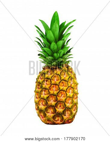 Pineapple On A White Background In The Studio.